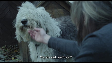 """Šuns dienos"" (rež. Ieva Veiverytė, 2013 m., 24 min.)"