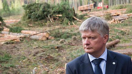 Apsilankė kertamoje Labanoro girioje: įaudrintą visuomenę ministras ramina – viskas teisėta
