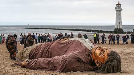 Anglijos paplūdimyje prabudo žmogus-milžinas – gyventojai suskubo įamžinti amą atimančią lėlę