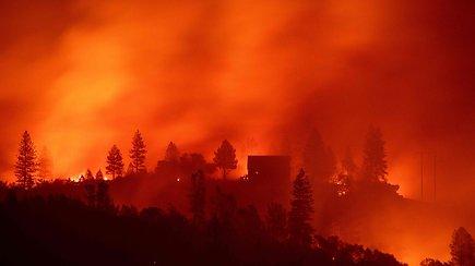 Pragaras žemėje: pražūtingiausias Kalifornijos gaisras – naujoji gamtos anomalija