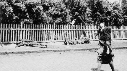 Vilniuje bus minimas Holodomoro 85-metis
