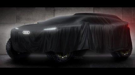 """Svarbi žinia Vaidotui Žalai: """"Audi"""" iš """"X-raid"""" kitam Dakarui pervilios C.Sainzą ir S.Peterhanselį"""