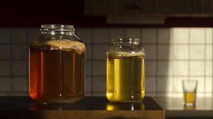 Strelkabelka receptas: kaip namuose pasigaminti populiarėjančios kombučos