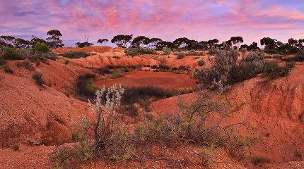 Kengūrų karalystė – Australija ir jos užburiantys horizontai