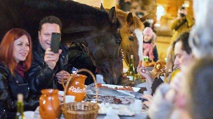 """""""Folkšoko'2017"""" pristatyme – pietūs su žirgais: šoką keitė džiaugsmas"""