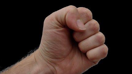 Šalčininkuose neblaivus karys smurtavo prieš moterį