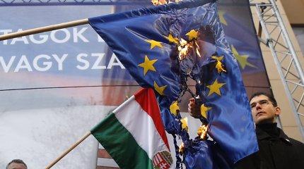 ES vertybių krizė: kodėl populistai ateina į valdžią?