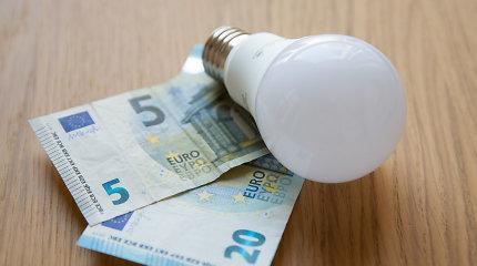 Kas ketvirto vartotojo išlaidos elektrai pernai augo, rodo apklausa