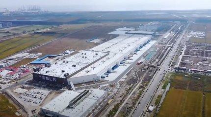 """Berlyno """"Tesla Gigafactory"""" problemos nesibaigia: stabdomi statybų darbai"""