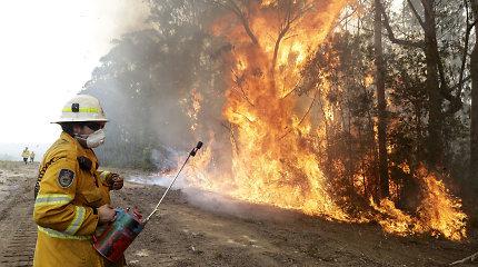 Gaisro Australijoje vaizdai ir padariniai