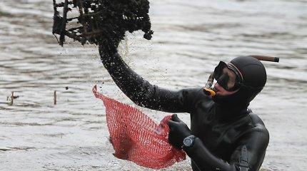 Šiaulių rajone vaikinas tvenkinyje sužvejojo šaunamuosius ginklus