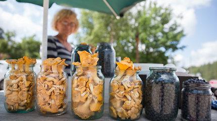 Miško gėrybės parduodamos Dzūkijos pakelėse