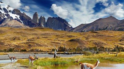 Milijardierių dovana leido įkurti įspūdingiausią pasaulio maršrutą per Patagoniją