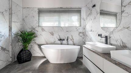 Vonios kambario dilemos: kaip neapsirikti priimant sprendimus dėl vonios, dušo ar unitazo