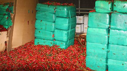 JAV muitininkai konfiskavo daugiau nei 3 tonas pipirų siuntoje paslėptos marihuanos