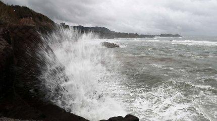 Pietų Korėjoje taifūnas Mitag pareikalavo keturių gyvybių, dar dviejų žmonių ieškoma