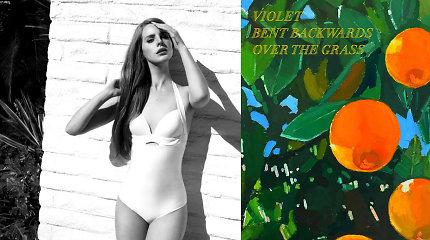 Lana del Rey išleido poezijos knygą: apie ką ji rašo?