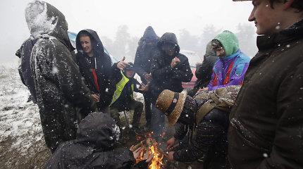 Dešimtims technomuzikos festivalio Prancūzijoje dalyvių prireikė pagalbos dėl hipotermijos