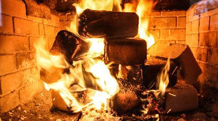 Roges ruošk vasarą: kokios šildymo sistemos ekonomiškiausios?