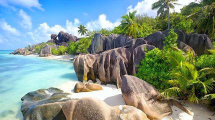 Kai norisi tiek naujų įspūdžių, tiek puikaus poilsio: gražiausi Afrikos paplūdimiai