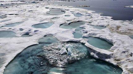 """""""Miegantis milžinas"""" bunda: Arktyje pradėjo veržtis metano sankaupos"""