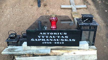 Po pustrečių metų ant Vytauto Šapranausko kapo statomas išskirtinis paminklas