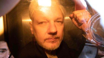 """J.Assange'o advokatė: D.Trumpas """"siūlė dovanoti"""" jam, jei jis paneigs Rusijos vaidmenį"""