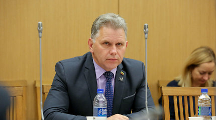 Seimo Konstitucijos komisijos pirmininkas abejoja, ar tokios komisijos reikia