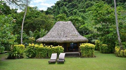 Fidžis: svečiuose pas draugiškuosius kanibalų anūkus