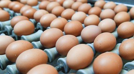 Kiek kiaušinių per įprastą metų savaitę suvalgo lietuviai?