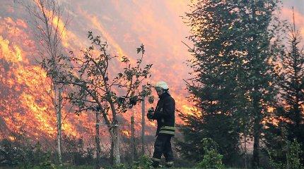 """Atnaujintas ikiteisminis tyrimas dėl pjuvenų kalno gaisro """"Gairelitoje"""""""