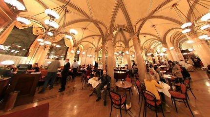 6 kavinės, kurias būtina aplankyti Vienoje