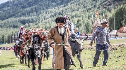 Pasakiškos gamtos ir egzotikos paieškos Kirgizijoje