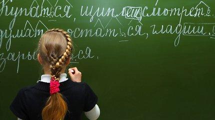 Rusų kalba Lietuvoje vis dar tarp paklausiausių