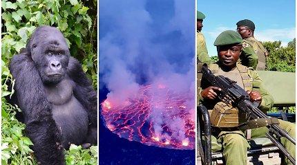 Žygis per Kongo DR: skystos lavos ežeras, retos gorilos ir iki jų lydinti apsauga su kulkosvaidžiais