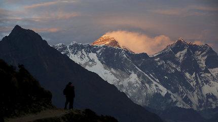 Nuo Everesto slidėmis sėkmingai nusileidęs slovėnas žuvo kirsdamas medį