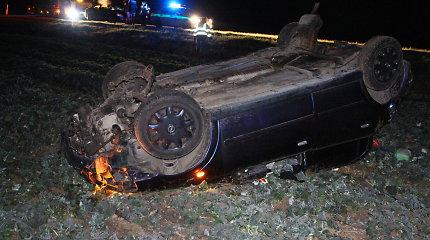 "Kelyje ""Via Baltica"" vilko ir automobilio akistata baigėsi ""Opel"" skrydžiu į laukus"