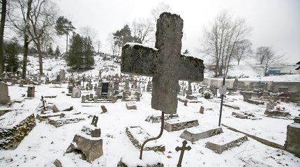 Vilniuje planuojama gaivinti dar kelis parkus ir tvarkyti Rasų kapines, lėšų bus prašoma iš ES