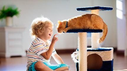 """Psichologė įvardijo svarbiausius uždavinius iki 7-ojo vaiko gimtadienio – kitaip pažvelkite į vaiko """"ne"""", gėdos jausmą ar pyktį"""
