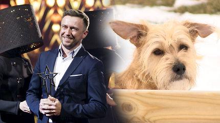 Trys Mariaus Jampolskio šunys: Lietuvos čempionė, vienintelis patinas ir TV žvaigždė