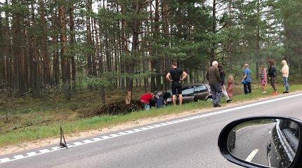 """Prie Pirčiupių """"Volkswagen"""" rėžėsi į medį, du žmonės sužeisti"""