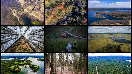 Testas: aukščiausi, ilgiausi, seniausi ir giliausi – ar gerai pažįstate Lietuvos gamtos rekordininkus?