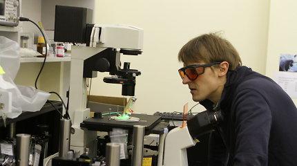 VU mokslininkas dalyvauja ambicingame pasauliniame projekte – sukurti žmogaus ląstelių atlasą
