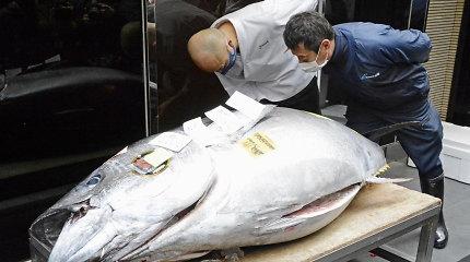 Japonijoje Naujųjų metų tunų aukcione šiais metais nepasiūlyta rekordinių sumų