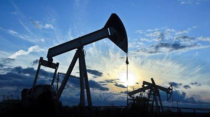 """Analitikai: brangstanti """"Brent"""" nafta degalų kainų kol kas nedidina"""