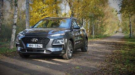Hibridas tapo labiausiai pageidaujama automobilių rūšimi Estijoje