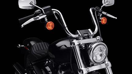 """Motociklas """"Harley-Davidson Softail Standard"""""""