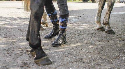 Žačių kaimo žirgyne darbuotojai sumušė neblaivų vyrą