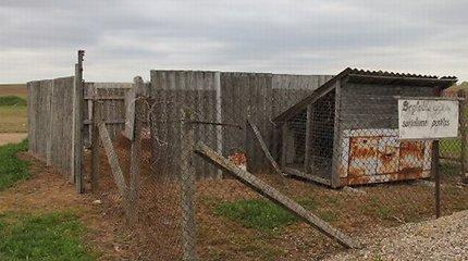 """Ukmergės rajone už beglobių gyvūnų gaudymą atlyginama gavus """"įrodymų"""" – jų uodegas arba letenėles"""