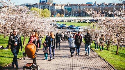 Kodėl vienam vilniečiui tenka mažiau pinigų, nei Klaipėdos ar Kauno gyventojui?